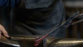 艺术性的金属锻件 影视素材