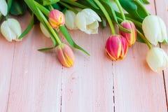 艺术抽象背景春天郁金香木设计 图库摄影