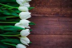 艺术抽象背景春天郁金香木设计 库存图片