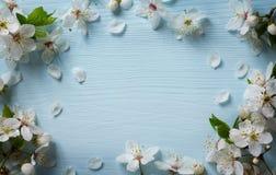 艺术春天花卉边界背景 免版税图库摄影