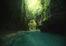 艺术照片 神仙的backgroud 绿色狂放的处女自然 远航到乔治亚,旅行到Martvili峡谷 可西嘉岛科西嘉岛creno de法国LAC湖山山 库存图片