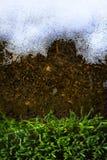 艺术用解冻的雪和绿草报道的春天地面 库存图片