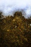 艺术用解冻的雪报道的春天地面 库存图片