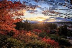 艺术禅宗庭院多数美好的地方  图库摄影