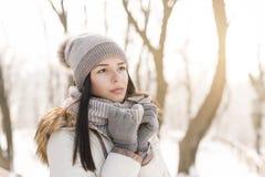 艺术秀丽方式高关键构成理想的冬天 免版税库存图片