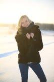 艺术秀丽方式高关键构成理想的冬天 免版税库存照片