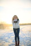 艺术秀丽方式高关键构成理想的冬天 库存照片