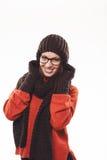 艺术秀丽方式高关键构成理想的冬天 免版税图库摄影