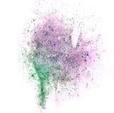 艺术绿色,紫色水彩墨水油漆一滴水彩飞溅c 库存图片
