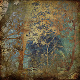 艺术背景森林grunge 库存照片