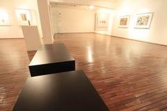 艺术,蒙得维的亚乌拉圭的博物馆历史 库存图片