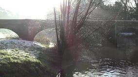 艾塞克斯桥梁-驮马桥梁Shugborough庄园和了不起的海沃德 股票视频