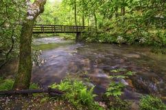 艾布拉姆斯小河,春天, Cades小海湾 图库摄影