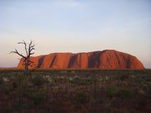 艾瑞斯岩石(Uluru)在黄昏 库存照片