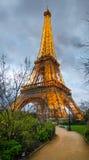 艾菲尔铁塔升在从战神广场公园的晚上 图库摄影