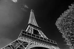 艾菲尔铁塔(黑色&白色) 免版税库存照片