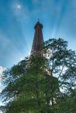 艾菲尔铁塔 免版税图库摄影