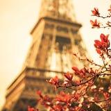 艾菲尔铁塔 免版税库存图片