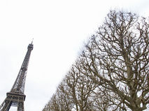 巴黎2012年艾菲尔铁塔4931 库存照片