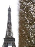 巴黎2012年艾菲尔铁塔4938 免版税库存照片