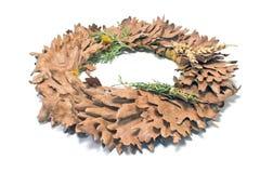 节假日查出拉脱维亚叶子盛夏橡木符号空白花圈 免版税库存图片