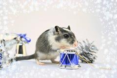 节假日鼠标 免版税库存图片