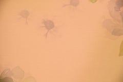 细节墙纸墙纸葡萄酒和摘要 库存图片