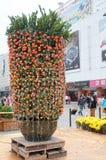 节日橙色春天结构树 免版税图库摄影