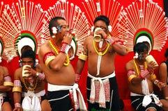 节日犀鸟印度nagaland 库存图片