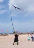 节日的参加者显示与风筝的一个展示 图库摄影