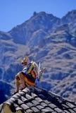节日秘鲁 免版税库存图片