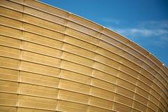 细节橄榄球场开普敦 免版税库存图片