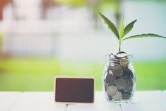 节约金钱和投资财政概念 种植生长在与黑屏小广告牌的储款硬币在木桌上 库存图片