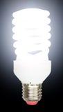 节能萤光电灯泡 免版税库存照片