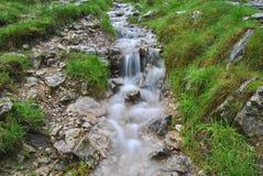 细节视图:暗藏的谷洞戴尔,高峰区的小河 库存图片