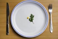 节食在盘子的食物,一点食物、豌豆和玉米 免版税库存图片