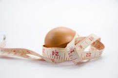 节食的鸡蛋 库存图片