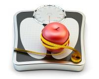 节食,健康吃,减肥和减重概念 皇族释放例证