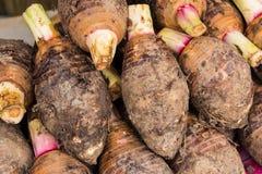 芋头堆在市场上 免版税库存照片