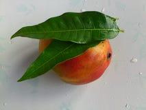 芒果、菜和欢欣 免版税库存照片