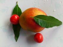 芒果、菜和欢欣 库存图片
