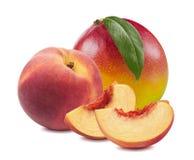 芒果叶子在白色背景12隔绝的桃子切片 库存图片