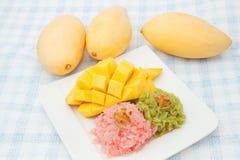 芒果和五颜六色的黏米饭 库存照片