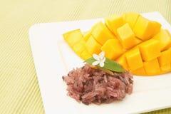 芒果和五颜六色的黏米饭 免版税图库摄影