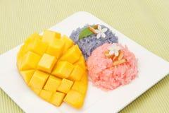 芒果和五颜六色的黏米饭 库存图片