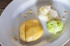 芒果和五颜六色黏米饭 库存照片