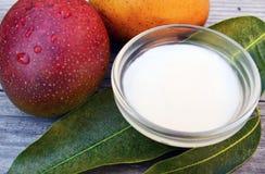 芒果在一个玻璃碗的身体黄油和新鲜的成熟有机芒果结果实和在老木背景的叶子 免版税库存图片
