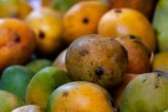 芒果在市场上 库存照片