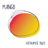 芒果果子象 在白色背景隔绝的手拉的传染媒介例证 为小册子、餐馆菜单和市场设计 免版税库存照片