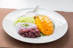 芒果用甜黏米饭 图库摄影